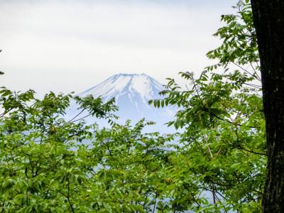 倉岳山からの富士山