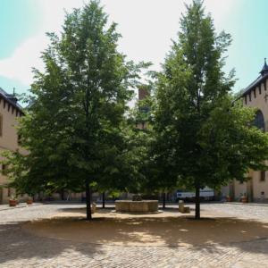 イタリア宮の庭