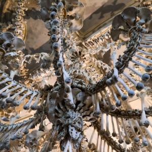 骸骨のシャンデリア